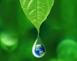 Lo verde y no tan verde de las empresas