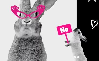 Natura quiere poner fin a las pruebas de cosméticos en animales