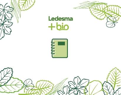 Ledesma fabrica cuadernos 100% sustentables