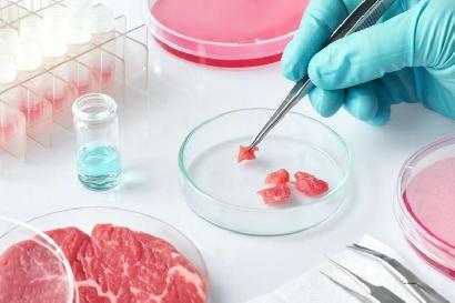 Gran parte de la carne que comeremos en 2040 no provendrá de animales sacrificados