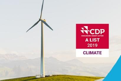 Las ciudades y compañías más comprometidas con la acción climática del 2019